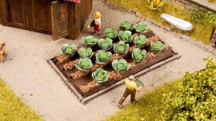NOCH 13217 — Капуста белокочанная (16 растений), 1:72—1:100